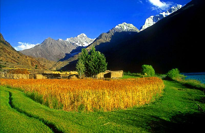 Environmental degradation in Chitral