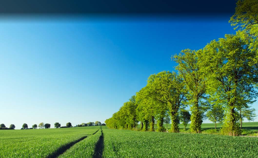 sustainable pakistan