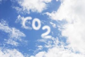 climate change mitigation anusha sherazi