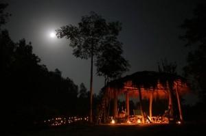 Shergarh Tented Camp, Kanha Tiger Reserve