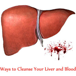 Cleanse Liver and Blood