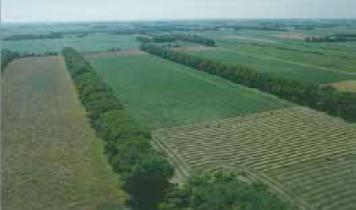 rain soil erosion