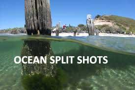 Ocean Split Shots
