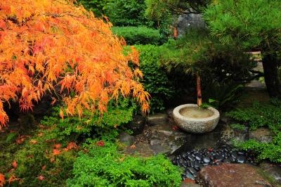 Eco-Friendly Zen Garden