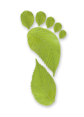 Reduce Environmental Footprint