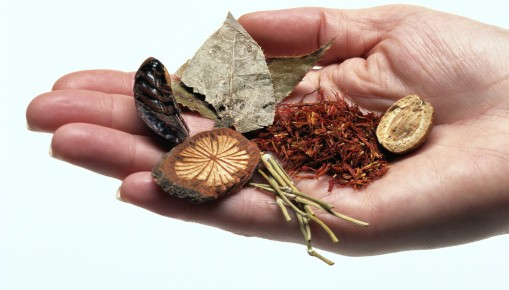Herbal Medicine and Science