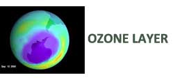 preserve ozone layer