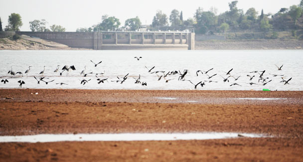 rawal dam pollution
