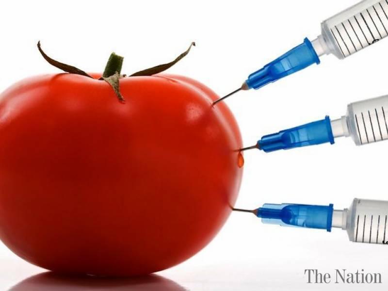 GMOs In Pakistan